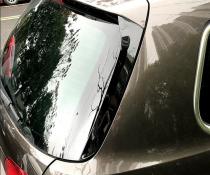 .Боковые спойлеры на заднее стекло VW Passat B6 / B7